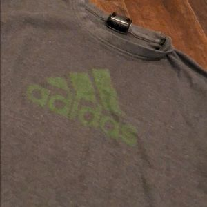 Gray/green warm